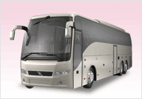30-40-50 Passenger Party Bus Rental Sacramento