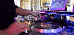 Best DJ Services In Sacramento