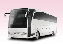 Charter Bus Service For Tours In Sacramento