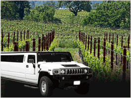Clarksburg Wine Tours from Sacramento